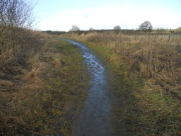 The path has not been maintained and has consequently narrowed to approximately 800mm in its width.