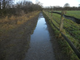 Puddles on the path are likely during periods of wet weather.