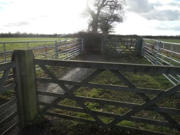 A double set of gates have been erected  to control livestock.