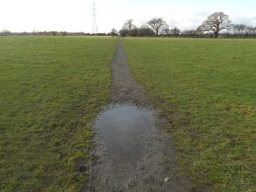 The path across the field is noticeably narrower than the rest of the trail (measuring approximately 700mm). Puddling across the path was also evident during the survey.