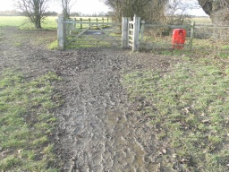 Mud and rough ground on the approach to the next set of gates.