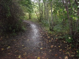 The path surface can be muddy after rainfall