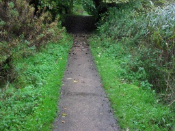 Tha path narrows to 850mm for approximately 10m