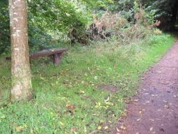 The bench is located off the path over the grass