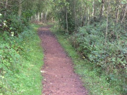 The path width is 700mm over 15m