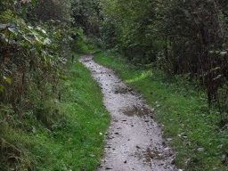 The path becomes muddy after rain and the width narrows to 650mm over 20m