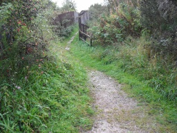 There is a bird hide to the left of the path but the surface is rough, partly overgrown and has a gradient of 9% (1:11)