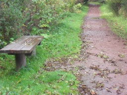 There is a seat located just next to the path
