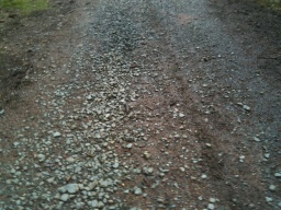 Loose stones cover the surface of the path in places.