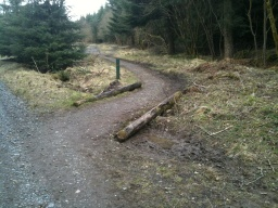 Take the path on the right by the two logs and the way mark post.