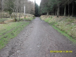 The totem pole on the left is where you will come out when you have completed the BlairenbathieTrail circuit.