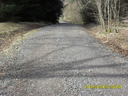 There is a gradient of 8% (1:12) for about 20m. The forest road has some loose stones covering most of the width of the track.