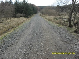 There is a long steady climb along the forest road. It rises about 30m over 500m (average slope 6% (1:16))