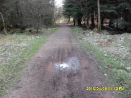 The path may be muddier after wet weather.