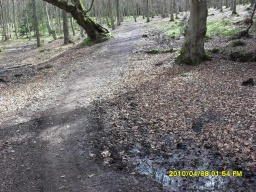 Muddy areas may make the path narrower (500mm) in places.The slope has a gradient of about 9% (1:11) for 75m.