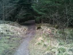 There is a short trail along the old railway line to a view point overlooking the Glen.