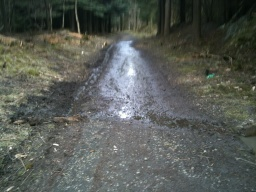 The may be water on the path after wet weather.