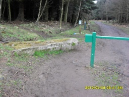 There is a gap to the side, wider than 1m which will allow you onto the forest road.The concrete block to the side or the mounting block for hirse riders further along may be  handy seats when you return from this 1.6 mile walk.
