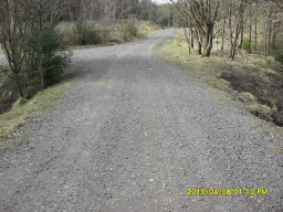 Turn left onto a short section of forest road that is covered with coarse  loose stones.