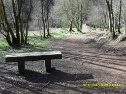 There is a seat (500mm high) at the top of the slope down into Keltyhill Glen.