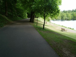 The seats next to the lake can only be reached by going down the grass bank or getting onto the shore side path that starts at the far end of the lake.