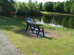 There are seats close to the path overlooking the lake along this section of the trail.