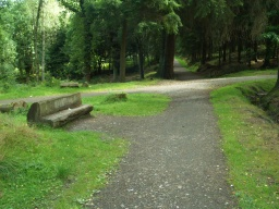 A rustic bench by the junction is easily accessible from the path.Go straight across this junction.To the left is a short cut back to the car park.