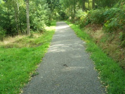There is a cross slope on several sections of this part of the path.