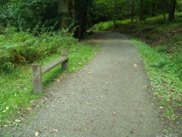 Another bench by the path.