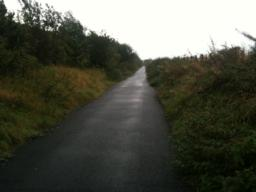 The cycleway is in a old railway cutting for the first 500m