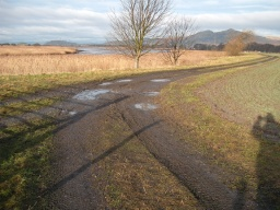 As the track approaches the banks of the River Forth bear right.There are pot holes and puddles along the track.