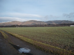 There are fine views to the Ochils.