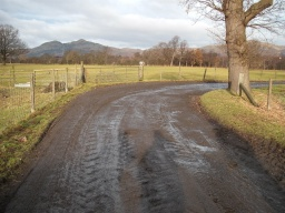 The track may be muddy especially around the farm.
