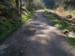 There are some potholes make the path uneven for a short distance.