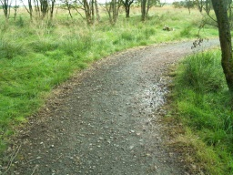 There are some parts of the path that are uneven.