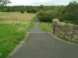 The start of the trail can be reached from the tarmac paths leading from Riggside Road in Easterhouse.There is  a slope to begin with a gradient of 12% (1:8) for 20m.