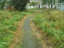 Grass growing into the path narrows its surface to less than 1 metre.