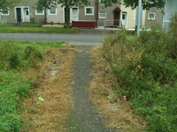There is a two metre slope with a gradient of 15% (1:7) to reach the pavement on Mossvale Road by the bus stop.