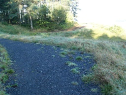 This passing place and some of the path in the area has a loose covering of stones.