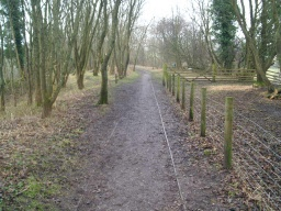 On the old railway line the path is level and firm.