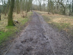 There may be occasional muddy  patches especially after wet weather.