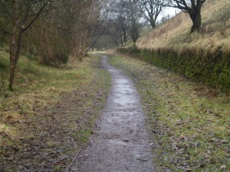 In the cuttings the path tends to be a little wetter and muddier following wet weather.