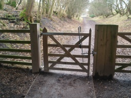 The gate has an easy to operate latch and opens both ways. It is self closing.