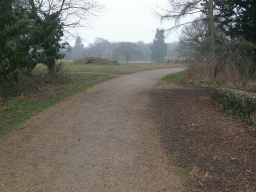 The wide path through the park is joined for a short distance. The track has a sealed surface with some loose stones on top which may make the surface a little unstable in places.