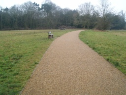 This is the last of four seats on the circular walk. Follow this track and retrace your footsteps to the car park.