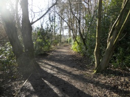 The path widens to approximately 2 metres  on a mostly level gradient.