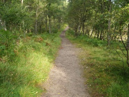 The path in the reserve has a good firm surface throughout the loop though it is narrow in places.