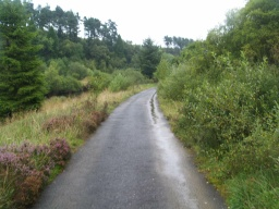 The road provides a good tarmac surface to the edge of Kielder Water
