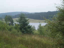 The climb provides good views across Kielder Water and the forest.