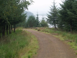 The path give views all along over the reservoir